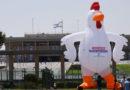 Uma galinha na entrada do Knesset