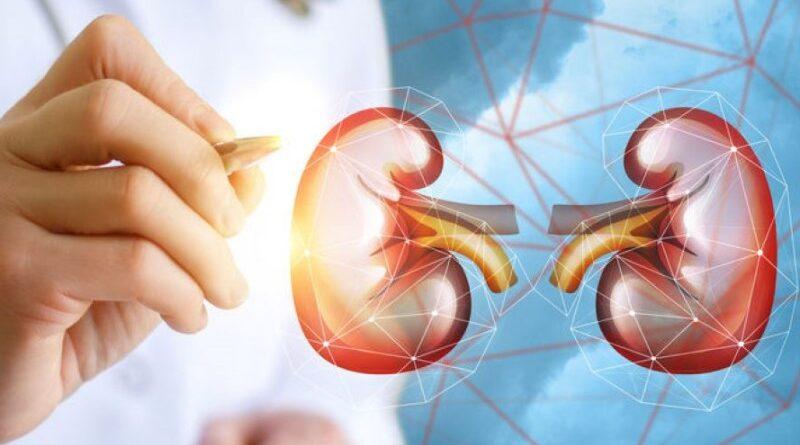 ranking de doadores vivos de rins
