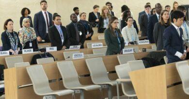 ONU decide por investigação