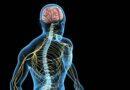 reparo de lesões nos nervos periféricos