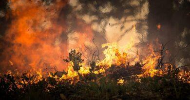 Incêndio debelado na área de Jerusalém