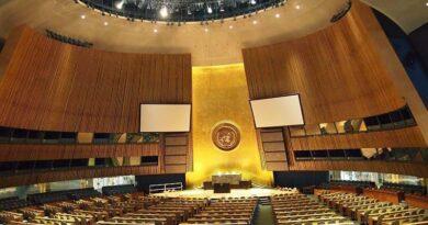 O absurdo da Assembleia Geral